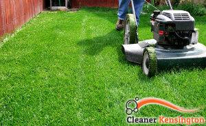 lawn-mowing-services-kensington