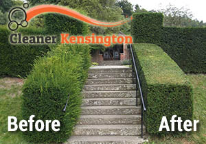 Before and After Hedge Trimming