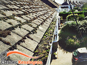 gutter-cleaning-kensington